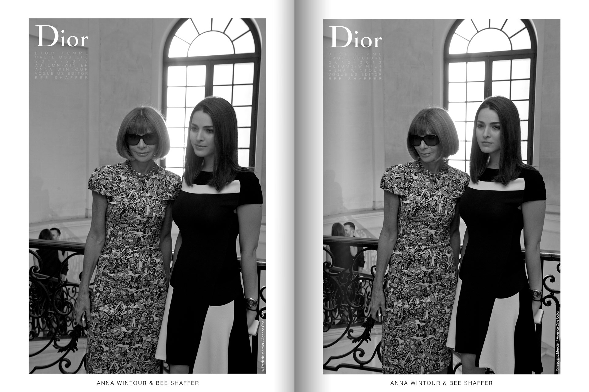 frederic mercier fashion photographer one color portraits people vogue anna wintour and bee shaffer for dior