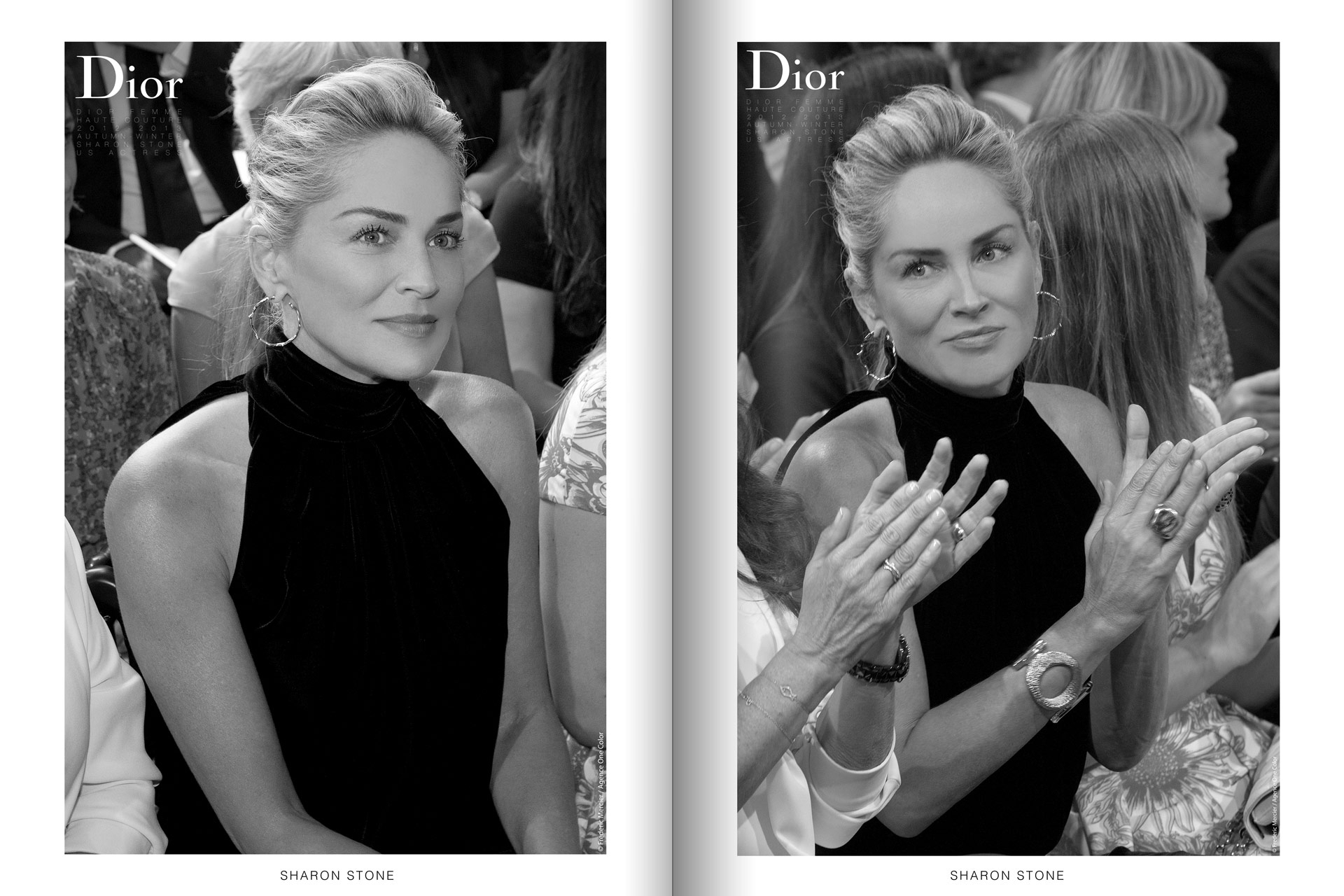 frederic mercier fashion photographer one color portraits people sharon stone for dior